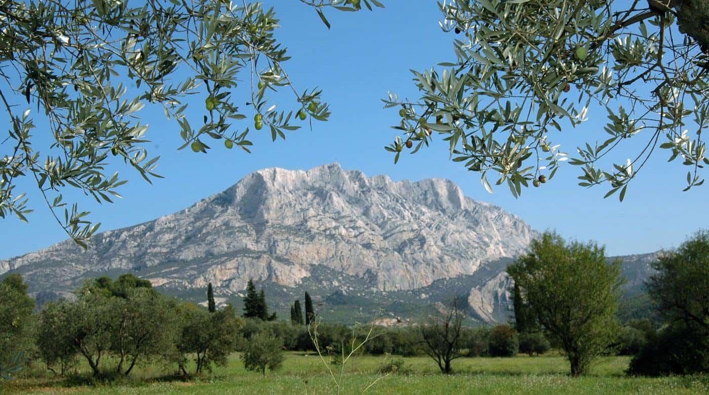 Syndicat AOP Huile d'olive Aix en Provence